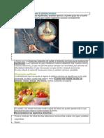 6 Formas de Mantener Sano Tu Sistema Nervioso