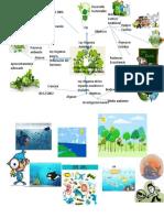 Mapa Mental Leyes Organica Ambiental