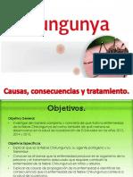 Presentación Fiebre Chikungunya