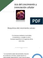 Bioquímica Del Crecimiento y La Diferenciación Célular