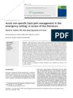 Acute Non-specific Back Pain Management in Theemergency Setting a Review of the Literature