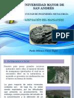 Manganeso diapositivas