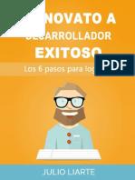 de novato a desarrollador exitoso.pdf