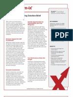 SAP Capacity Planning SolBrf v2.1(2)