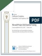 Microsoft Project 2016 Essential Training