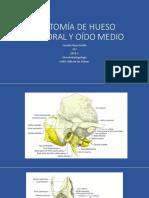 ANATOMÍA DE HUESO TEMPORAL Y CONDUCTO AUDITIVO EXTERNO [Autoguardado].pptx