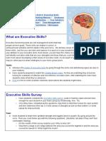 Executive Skills Activities