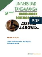 Conclusion Del Reg Subcontratacion - Dl