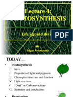 Lec4 Photosynthesis
