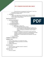 Epidemiología Definición y Fisiopatología Erge