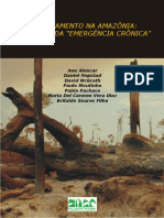 DesmatamentonaAmazoniaindoalemdaemergenciacronica