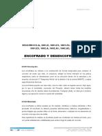 ENCOFRADO Y DESENCOFRADO.doc