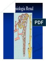 Fisiologia Renal 2