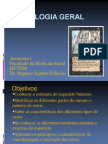 3. Osteologia Geral-teorica