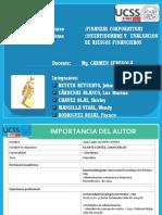 Paper- Final.pptx Ok