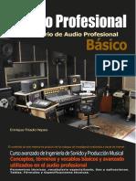 Diccionario de Audio Pro