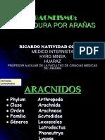 aracnesmo-1226002221290865-8