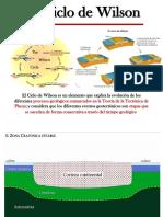 4_CICLO_DE_WILSON.pdf