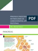 Pancreas Endocrino Metabolismo Ch, Lip y Prot