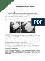 Carta Internacional de Los Derechos Humanos