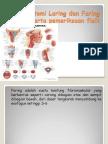 edoc.tips_anatomi-laring-dan-faring-beserta-pemeriksaan-fisik--2.pdf