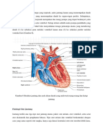 Fisiologi Jantung (Autosaved)