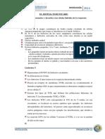 Histología Del Sistema Inmunitario