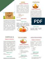 FOLLETO NUTRICION