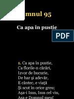 095.CA Apa in Pustie