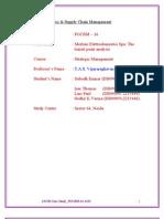 Merloni Elettrodomestici SpA Case Analysis Ver 1.2