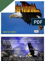 Povestea_vulturului