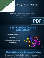Presentacion Biologia Celular y Molecular