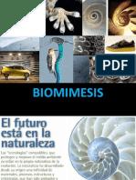 Bio Mimesis