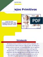 224474368-Reflejos-Primitivos