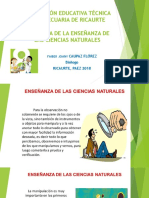 Exposicion Didactica d Ela Enseñanza de Las Ciencias de Ciencias Naturales