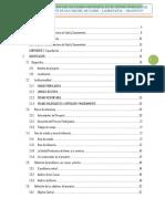 PIP-CAMAL-ANTACOLPA.pdf