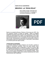Rosa Luxemburgo, Iván Ljubetic
