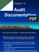 Chapter 14 Audit Documentation