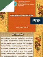 13 Unidad de  Nutrición, profesora Zulay Castillo