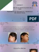 enfermedades de los tejidos blandos