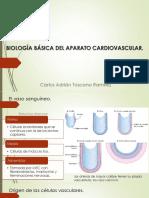 Biologia Basica Del Aparato Cardiovascular-Carlos Adrian Toscano Ramirez