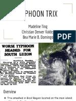 DRRR (Typhoon Trix) x