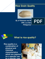 Rice Quality