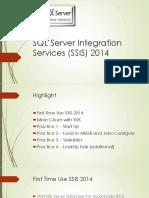 SQL Server Integration Services (SSIS) 2014