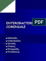 ENTEROBACT COM.ppt