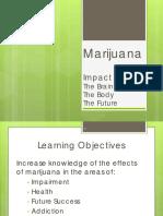 Marijuana's Effects on Brain, Body and Behavior