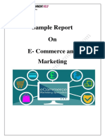 Sample Report On E- Commerce and Marketing by Experts