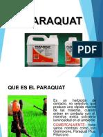 Diapositiva Del Paraquat Ok