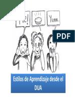 Estilos de Aprendizaje desde el DUA.pdf