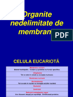 Organite Nedelimitate de Membrane
